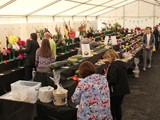 Exhibition Marquee Cut flowers, Fruit & Veg (3)
