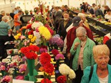 Exhibition Marquee Cut flowers, Fruit & Veg (5)