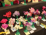 Sweetpea Section