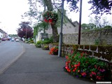 Ulster in Bloom 2011 (17)