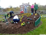 Ulster in Bloom 2011 (3)