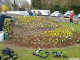 Ulster in Bloom 2011 (4)