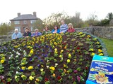 Ulster in Bloom 2011 (5)