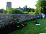 Ulster in Bloom 2011 (9)