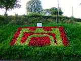ulster in bloom 2012 (1)